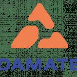 logo_Damate_плоский-01_2